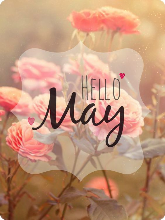 wELCOME TO MAY